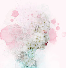 Soft Profile Of A Woman Outline With Cherry Blossom Flowers, Branches And Color Stains