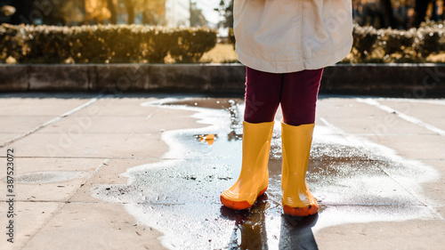 Fotomural child legs in yellow boots standing in the middle of a puddle after rain