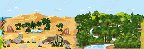 Fotografia Forest nature landscape scene and desert with oasis landscape scene