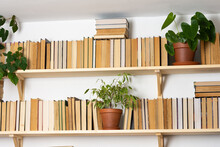 Light Wooden Bookshelves With ...