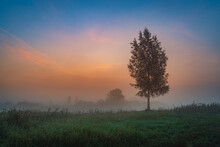 Sunrise Over The Field With Th...