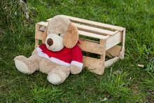 Stuffed Dog Lying In A Wooden ...