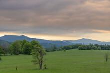 Landscape In National Park Boh...