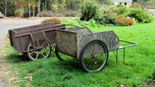 Old Flower Carts In The Garden