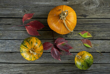 Three Pumpkins On A Background Of Old Wooden Boards. Flat Lay Photo