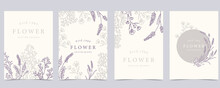 Collection Of Flower Background Set With Lavender.Editable Vector Illustration For Website, Invitation,postcard And Sticker