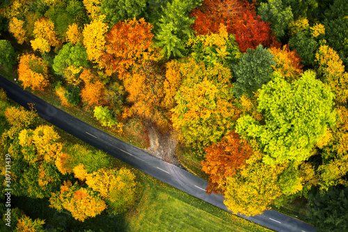 Photographie Vertical aerial view of the gray band of an asphalted country road that runs dia
