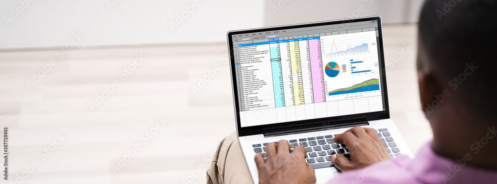Fototapeta African American Man Using Spreadsheet Reports