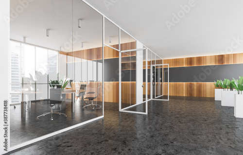 Cuadros en Lienzo Gray and wooden office hall