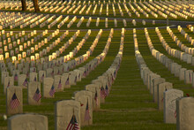 Rows Of U.S. Service Members Graves With American Flags At Sunset In The National Cemetery In Los Angeles