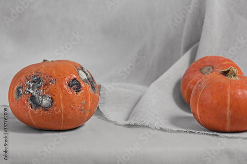 Fotografía Ugly pumpkin is on a natural linen background