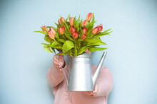 A Bouquet Of Red Tulips In An ...