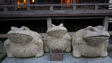 Stone Frog Statue