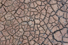 Dry And Cracked Mud