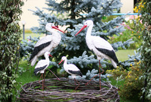 Stork Family With Four Baby Storks In A Garden. Garden Figurine. Concept Of Family