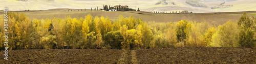 Campagna e alberi in autunno Fototapete