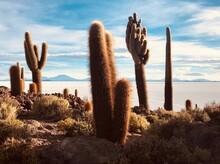 Unique Succulent Plant Cacti I...