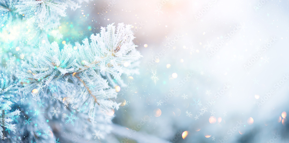 Fototapeta Christmas winter blurred background. Xmas tree with snow, holiday background. New year Winter art design, wide screen holiday border