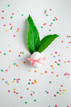 Beautiful, Blooming, Celebration, Closeup, Color, Concept, Decorative, Design, Dessert, Easter, Egg, Eggs, Female, Flat, Floral, Flower, Food, French, Green, Group, Growing, Growth, Hand, Happy Easter