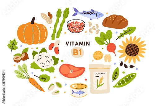 Obraz Collection of vitamin B1 sources. Food containing thiamin. Bread, nuts, vegetable, meat, fish, caviar, cereals. Dietetic products, organic nutrition. Flat vector cartoon illustration isolated - fototapety do salonu