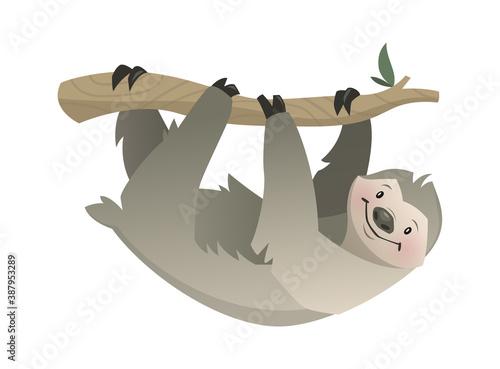 Naklejka premium Sloth. Tropical jungle, circus or zoo animal, gray bear on branch hanging, wildlife exotic childish print, african fauna character poster. Vector modern single cartoon illustration