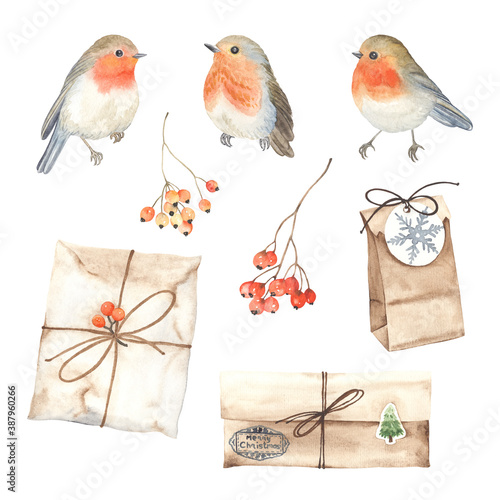 Obraz na plátně Watercolor set of robin birds, gift boxes and branches with berries rowan