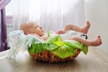 Newborn Baby Boy In Basket, Ba...