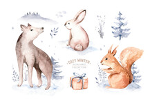 Watercolor Winter Forest Animals Deer With Fawn, Owl Rabbits, Bear, Wolf Birds On White Background. Wild Forest Fox And Squirrel Animals Set. Hand Painted Winter Illustration