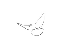 SINGLE-LINE DRAWING OF A DOVE. This Hand-drawn, Continuous, Line Illustration Is Part Of A Collection Of Artworks Inspired By The Drawings Of Picasso. Each Gesture Sketch Was Created By Hand.