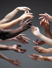 Humanity. Hands Of Different People In Touch Isolated On Grey Studio Background. Concept Of Relation, Diversity, Inclusion, Community, Togetherness. Weightless Touching, Creating One Unit.
