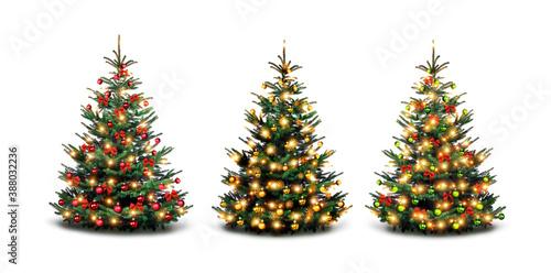 Cuadros en Lienzo Bunt geschmückte Weihnachtsbäume vor weißen Hintergrund