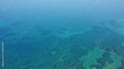 Fotografie, Obraz Shallow sea in Kos Island, Remarkable Vegetation below the surface