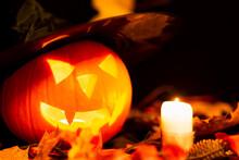 Halloween Still Life Colorful ...