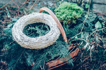 Natural Material Background - Moss, Green Coniferous Plants, Straw Round Base In Wooden Basket