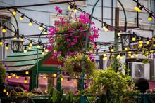 Lights Strung Above Boho Sidewalk Cafes Filled With Plants In Tbilisi - Selective Focus