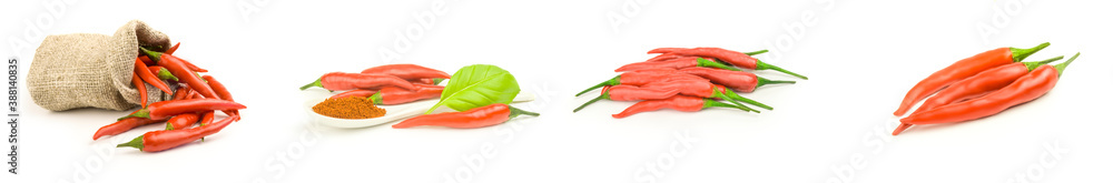 Fototapeta Collection of red hot chili pepper isolated on a white background cutout