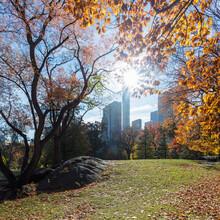 USA, New York, New York City, Central Park In Autumn