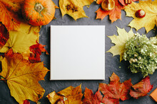 Blank Square Canvas On Autumn ...