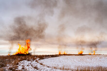 Fires Burn In A Field In Rural...
