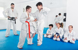 Pair of little boys practicing new karate moves during a class in gym