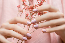 Female Hands With Pink Nail Design. Pink Nail Polish Manicure. Woman Hands Hold Pink Flowers.