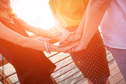 Friends holding hands - concept for togetherness and strength. Canvas Print