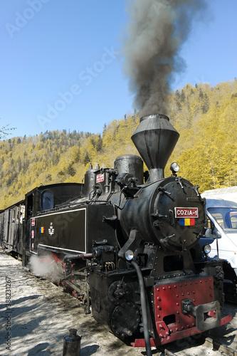 Fototapeta Coal powered train in Maramures Romania. Mocanita on Viseu Valley, obraz na płótnie