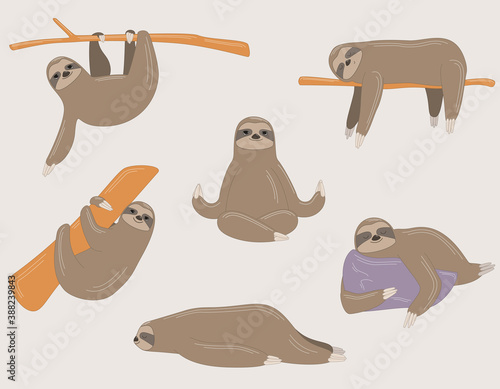 Naklejka premium Sloth in different poses. Lazy animal in linear cartoon style.