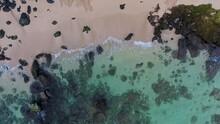 An Aerial View Of A Green Sea Turtle Chelonia Mydas Maui Hawaii USA.