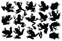 Hand Drawn Black Vector Silhouettes Of Tree Frogs. Stock Illustration Of Amphibians.