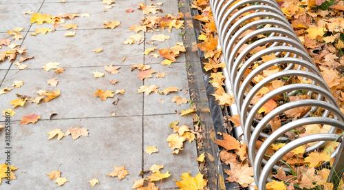 Obraz pusty stojak na rowery wsród jesiennych liści - fototapety do salonu