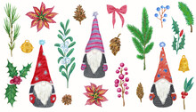 Christmas Set With Scandinavian Gnomes. Illustrations Of Fir And Berries Branches