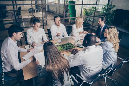 Slika na platnu Photo of focused people business sharks sit table desk boardroom workplace works