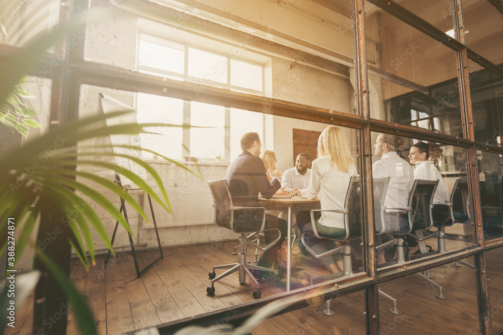 Fototapeta Nice attractive focused stylish skilled executive managers gathering discussing sales marketing industry plan result at loft industrial style interior workplace workstation behind glass wall